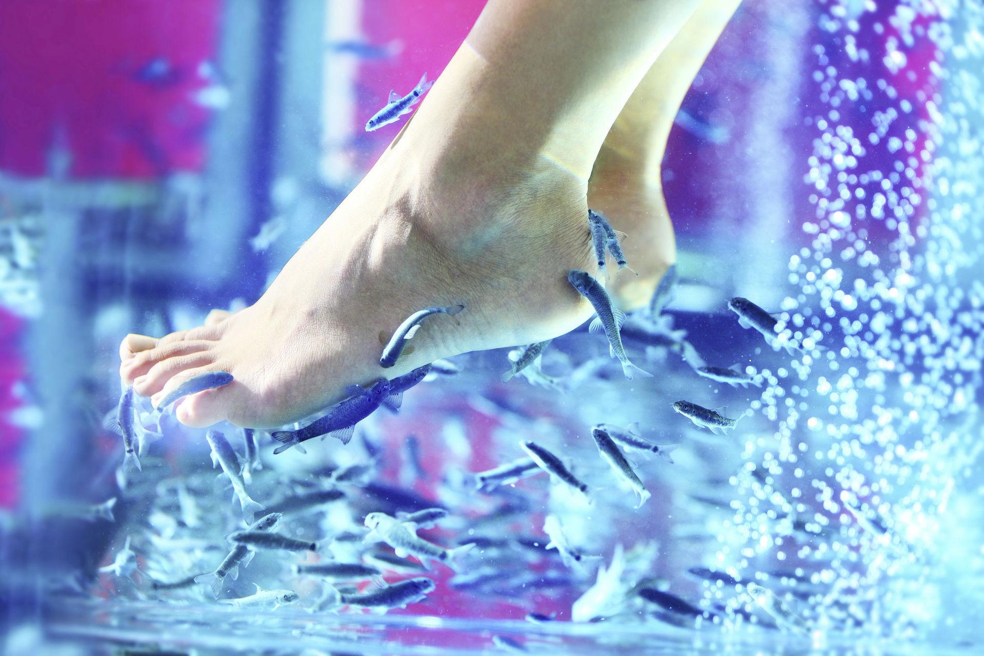 Solo Füße Bilder